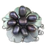 Muschel Schnappschließe, mit kultivierte Süßwasser kernhaltige Perlen & Messing, Blume, plattiert, 3-Strang, keine, 33x37x13.50mm, Bohrung:ca. 2mm, verkauft von PC