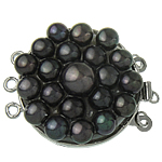Messing Schnappschließe, mit kultivierte Süßwasser kernhaltige Perlen, flache Runde, Platinfarbe platiniert, 3-Strang, frei von Nickel, Blei & Kadmium, 27x34x10mm, Bohrung:ca. 2mm, verkauft von PC