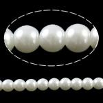 Mode Glasperlen, Glas, rund, Volltonfarbe, weiß, 8mm, Bohrung:ca. 1mm, Länge:ca. 32 ZollInch, 10SträngeStrang/Tasche, verkauft von Tasche