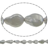 Münze Süßwasser Zuchtperlen, Natürliche kultivierte Süßwasserperlen, grau, 12-13mm, Bohrung:ca. 0.8mm, verkauft per ca. 14.3 ZollInch Strang