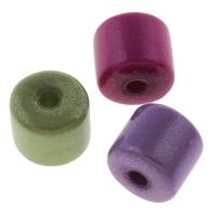 Traumhafte Acrylperlen, Acryl, Zylinder, Spritzlackierung, gemischte Farben, 8x8mm, Bohrung:ca. 2mm, ca. 1280PCs/Tasche, verkauft von Tasche