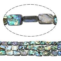 Seeohr Muschelperlen, Rechteck, natürlich, verschiedene Größen vorhanden, verkauft von Menge