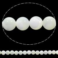 Natürliche weiße Muschelperlen, rund, 6mm, Bohrung:ca. 1mm, Länge:ca. 15.5 ZollInch, 10SträngeStrang/Tasche, ca. 65PCs/Strang, verkauft von Tasche