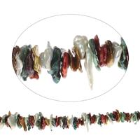 Biwa kultivierte Süßwasserperlen, Natürliche kultivierte Süßwasserperlen, gemischte Farben, 12x2mm-30x6mm, Bohrung:ca. 0.8mm, verkauft per ca. 16 ZollInch Strang