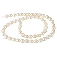Natürliche Süßwasser, lose Perlen, Natürliche kultivierte Süßwasserperlen, weiß, 6-7mm, Bohrung:ca. 0.8mm, verkauft per ca. 15.3 ZollInch Strang
