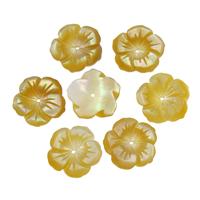 Natürliche gelbe Muschelperlen, Blume, 13x1.5mm, Bohrung:ca. 1mm, 50PCs/Tasche, verkauft von Tasche