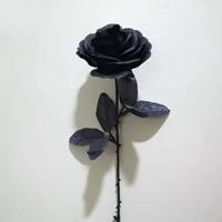 Künstliche Blumendekoration, Kunstseide, schwarz, 100x600mm, verkauft von PC