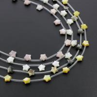 Muschel Perle, Stern, verschiedenen Materialien für die Wahl, 8x8x4mm, Bohrung:ca. 0.5mm, 20PCs/Strang, verkauft per ca. 12.9 ZollInch Strang