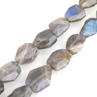 Labradorit Perlen, facettierte, 13-17x10-14x6mm, Bohrung:ca. 0.6mm, ca. 26PCs/Strang, verkauft per ca. 16 ZollInch Strang