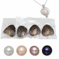 Oyster & amp; Wunsch Perlen-Kit, Natürliche kultivierte Süßwasserperlen, Kartoffel, gemischte Farben, 7-8mm, 4PCs/Tasche, verkauft von Tasche