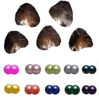 Süßwasser kultivierte Liebe wünschen Perlenaustern, Natürliche kultivierte Süßwasserperlen, Kartoffel, gemischte Farben, 7-8mm, 10PCs/Menge, verkauft von Menge