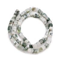Baum Achat Perlen, Baumachat, Würfel, 4x5mm, Bohrung:ca. 1mm, ca. 15PCs/Strang, verkauft per ca. 15 ZollInch Strang