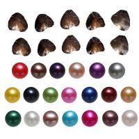 Süßwasser kultivierte Liebe wünschen Perlenaustern, Natürliche kultivierte Süßwasserperlen, Kartoffel, gemischte Farben, 7-8mm, 20PCs/Menge, verkauft von Menge