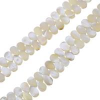 Natürliche weiße Muschelperlen, Tropfen, 6x9x3mm, Bohrung:ca. 0.5mm, ca. 116PCs/Strang, verkauft per ca. 14 ZollInch Strang