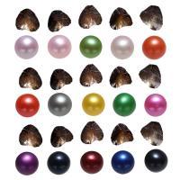 Süßwasser kultivierte Liebe wünschen Perlenaustern, Natürliche kultivierte Süßwasserperlen, Kartoffel, gemischte Farben, 7-8mm, 15PCs/Menge, verkauft von Menge