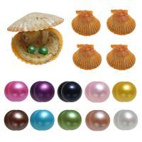 Akoya kultivierte Seeperle Oyster Perlen, Akoya Zuchtperlen, Kartoffel, gemischte Farben, 7-8mm, 10PCs/Tasche, verkauft von Tasche
