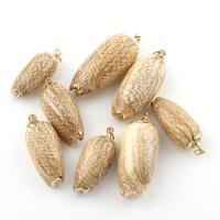 Natürliche Seemuschel Anhänger, Trompete Muschel, goldfarben plattiert, 18x41x15mm-13x29x11mm, Bohrung:ca. 4mm, verkauft von PC