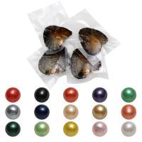 Süßwasser kultivierte Liebe wünschen Perlenaustern, Natürliche kultivierte Süßwasserperlen, rund, gemischte Farben, 7-8mm, 50PCs/Menge, verkauft von Menge