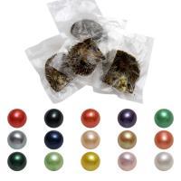 Akoya kultivierte Seeperle Oyster Perlen, Akoya Zuchtperlen, rund, gemischte Farben, 7-8mm, 50PCs/Menge, verkauft von Menge