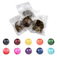Akoya kultivierte Seeperle Oyster Perlen, Akoya Zuchtperlen, rund, keine, 11-13mm, verkauft von PC