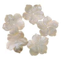 Achat Perlen, Weiße Muschel, Blume, weiß, 30x28x5mm, Bohrung:ca. 1mm, verkauft von PC