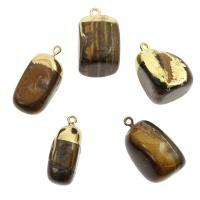 Tigerauge Anhänger, goldfarben plattiert, natürliche, frei von Nickel, Blei & Kadmium, 17*17*18-14*11*29mm, Bohrung:ca. 2mm, 10PCs/Menge, verkauft von Menge