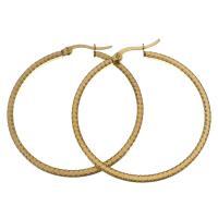 Edelstahl-Hebel zurück-Ohrring, Edelstahl, goldfarben plattiert, für Frau, 44x45mm, verkauft von Paar