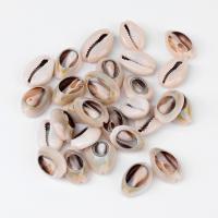 Muschel Zubehör, Multifunktions & DIY, 18~20X13~14X6~8mm, ca. 50PCs/Tasche, verkauft von Tasche