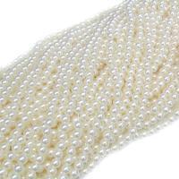 ABS-Kunststoff-Perlen, rund, verschiedene Größen vorhanden, keine, verkauft von Tasche