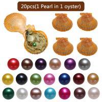 Akoya kultivierte Seeperle Oyster Perlen, Akoya Zuchtperlen, Kartoffel, gemischte Farben, 7-8mm, 20PCs/Tasche, verkauft von Tasche