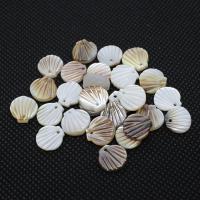 Natürliche weiße Muschel Anhänger, Schale, DIY, keine, Bohrung:ca. 1mm, 10PCs/Tasche, verkauft von Tasche