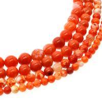Feuerachat Perle, rund, DIY & verschiedene Größen vorhanden, rote Orange, verkauft per ca. 14.9 ZollInch Strang