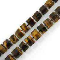 Tigerauge Perlen, Zylinder, 8x10mm, Bohrung:ca. 1.5mm, ca. 35PCs/Strang, verkauft per ca. 15.5 ZollInch Strang