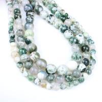 Natürliche Moos Achat Perlen, rund, verschiedene Größen vorhanden, grün, Bohrung:ca. 1mm, verkauft per ca. 14.9 ZollInch Strang