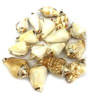 Natürliche Seemuschel Anhänger, Trompete Muschel, Strandschnecke, goldfarben plattiert, DIY, gemischte Farben, 20*35mm~25*45mm, verkauft von PC